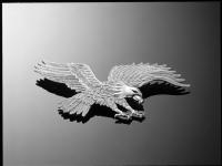 aigle 220mm